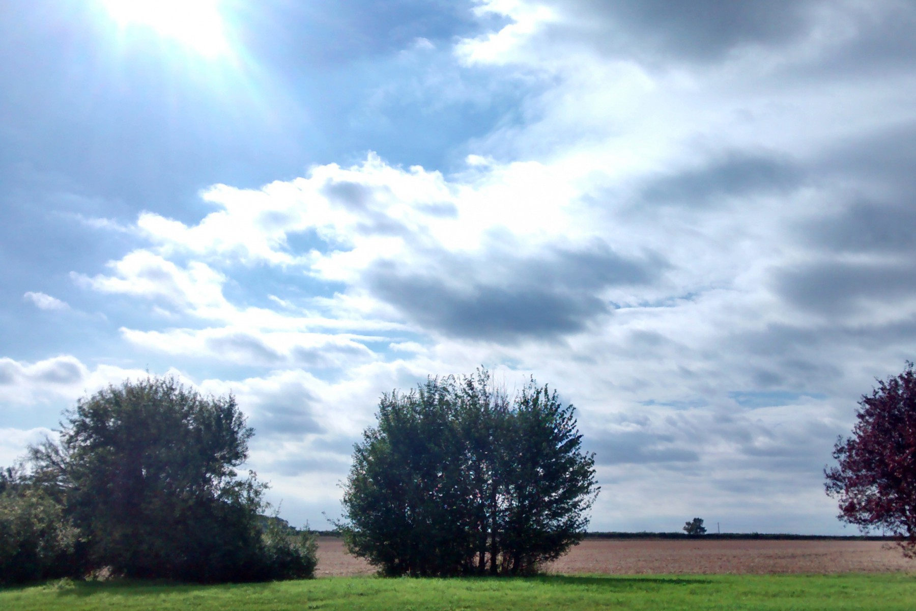 cropped-whale-barn-sky